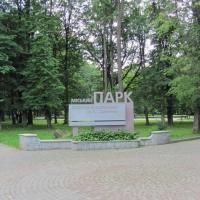 Комунальники продовжують облагороджувати парк ім. Шевченка