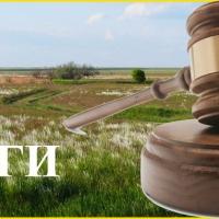 Управління Держгеокадастру в Івано-Франківській області шукає виконавця земельних торгів