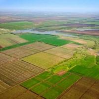 На Франківщині прокуратура встановила факт нецільового використання 145 га землі