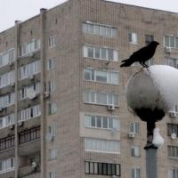 Експерт пояснив, чи є сенс купувати квартиру в Україні до нового року