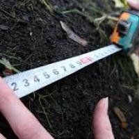 В уряді повідомили, коли в Україні запрацює ринок землі