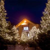 Франківців закликають брати участь у конкурсі на найкращий новорічний благоустрій