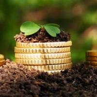 Надходження від сплати за землю в Івано-Франківську зросли на 15 мільйонів гривень