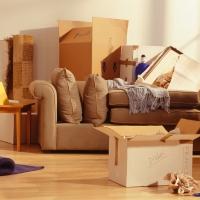 ТОП 5 дивних вимог до орендованого житла