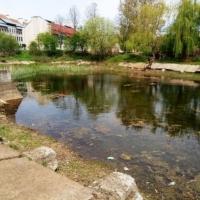 5 тисяч за ідеї: у Франківську стартував конкурс на кращий проект з осучаснення озера біля 21 школи
