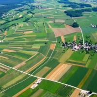 Ринок землі в Україні: міфи і реалії