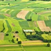 На Прикарпатті прокуратура повернула державі 64 га землі вартістю понад 3 мільйони гривень