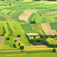 У Калуші планують створити комісію, яка займеться підприємцями, що незаконно користуються земельними ділянками