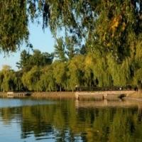 В Івано-Франківську на міському озері реконструюють пляж