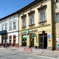 Знайомимось з історичними будівлями Івано-Франківська. Будинок Кароля Ертеля