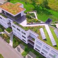 БК «Мельник» масштабно втілює нову для Франківська технологію «зелених дахів»