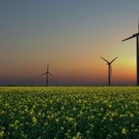 На Франківщині побудують сонячну та вітрову електростанції