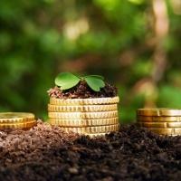 У Франківську затвердили нові пільги зі сплати земельного податку в 2018 році