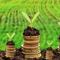 Ставки земельного податку - хто і скільки платитиме в 2018 році?