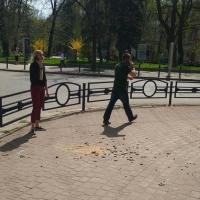 В центрі Івано-Франківська знову сипляться будинки. ФОТОФАФКТ