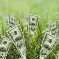 У 2016 році прикарпатці заплатили за землю майже 200 мільйонів гривень