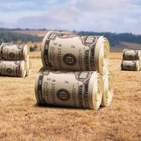В Україні почнеться глобальний розпродаж землі