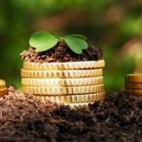 На Прикарпатті до місцевих бюджетів надійшло 295 млн грн плати за землю