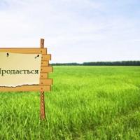 В Івано-Франківську у вересні пройдуть земельні торги