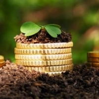 До бюджетів Прикарпаття надійшло понад 350 млн грн земельного податку