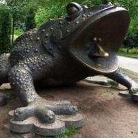 У Франківську встановлять пам'ятник жабі
