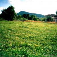 В селі Поляниця продають земельну ділянку під житловий будинок