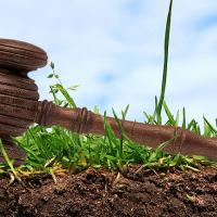 Івано-Франківськ планує продати з аукціону шість земельних ділянок