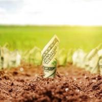 Мораторій, зубожіння і популізм: 5 міфів про ринок землі