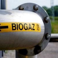 На Франківщині планують побудувати біогазовий завод на відходах сільського господарства та тваринництва