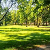 Чому краще обирати квартиру поблизу парку