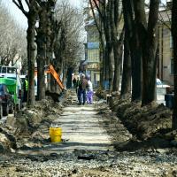 Ще один затишний сквер з'явиться в Івано-Франківську