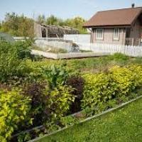 Щоб сусіди менше сварились: як хочуть змінити ДБН щодо садибної забудови