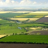Інспектори Держгеокадастру Івано-Франківщини цьогоріч нарахували понад 150 тис. грн шкоди за порушення земельного законодавства