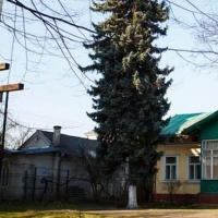 Франківська влада воює з Московським патріархатом за дитячий садок на Чорновола,6