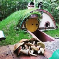 """Hobbithills: у Карпатах будують фантастичне містечко з фільму """"Володар перснів"""""""