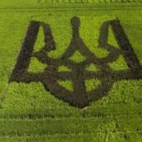 Верховна Рада відкрила ринок землі: як голосували нардепи з Прикарпаття