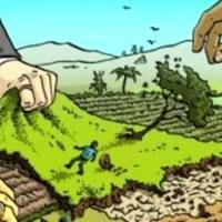Члени кооперативу звинувачують екс-сільського голову Угринова у махінаціях із землею