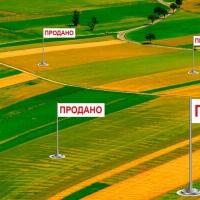 Експерт спрогнозував вартість землі на рівні 2 тисяч доларів за гектар