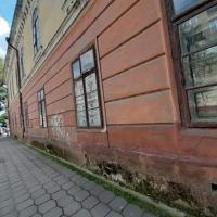 Будинки вмирають стоячи: на Шеченка руйнується 140-літня пам'ятка архітектури. ФОТО