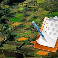 В липні 5 рішень у сфері земельних відносин прийняла та оприлюднила Івано-Франківська міська рада