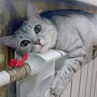 В Івано-Франківську запустили всі котельні