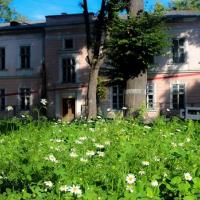 Франківськ виграв грант на реставрацію Палацу Потоцьких