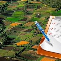 В Івано-Франківську продали дві земельні ділянки за 1,2 млн. гривень