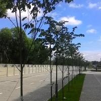 «Калинова слобода» – зразок комплексного благоустрою. Фото