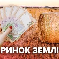Ринок землі: на Прикарпатті вже продали 41 ділянку
